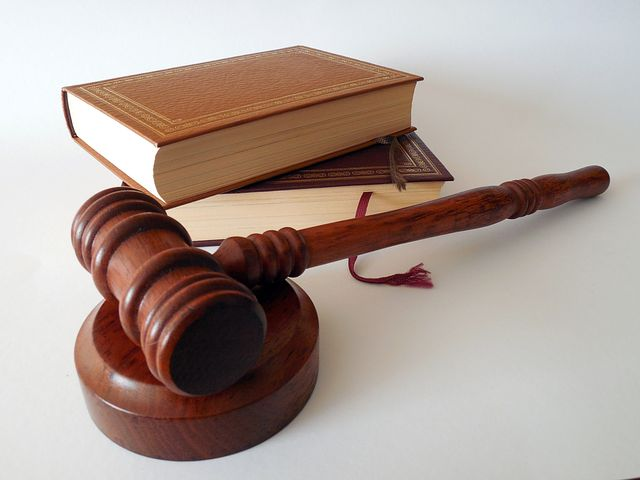 gavel and a law book